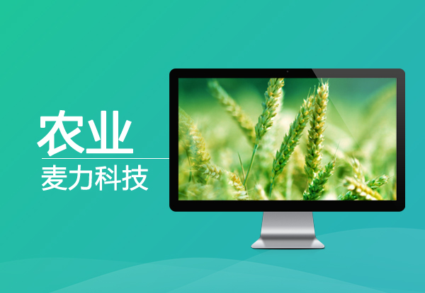 生态农业网站制作
